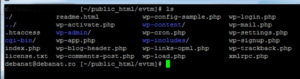 backup-wordpress-ssh-command-2