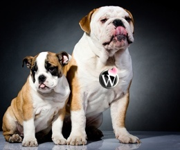 wp-super-dogs